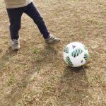 幼児のサッカーボールの選び方。3歳息子はアディダスの3号球。